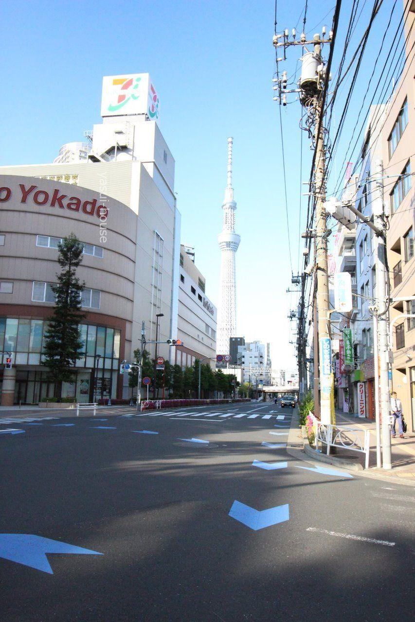 横断歩道から東京スカイツリーが綺麗に見えます