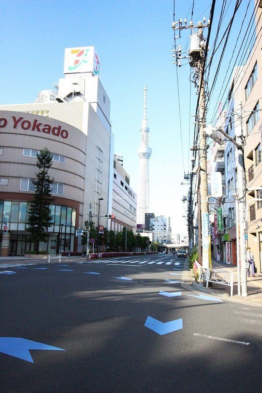 曳舟川通りから東京スカイツリーを望む