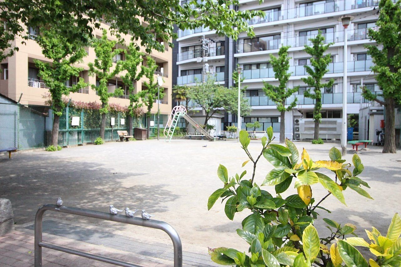 水戸街道手前にある公園 すずめが4羽止まっています