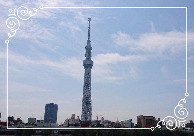 桜橋より望む